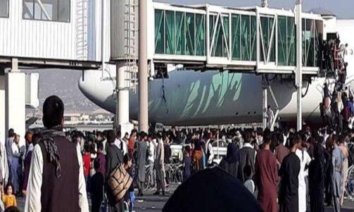 अफगानिस्तान के लोगों में हड़कंप से दूसरे देश जाने का भरपूर प्रयास कर रहे; विमान के अंदर सीट न मिलने पर उसके पहिए से ही लटके लोग